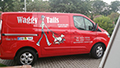 red van with cartoon woman walking dogs